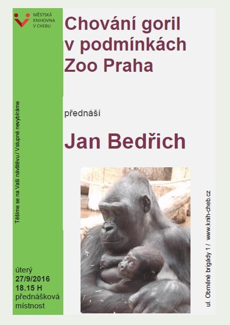 Knihovna Chovani Goril V Podminkach Zoo Praha Mesto Cheb